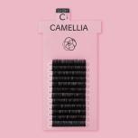 CAMELLIA BLACK / D+ CURL