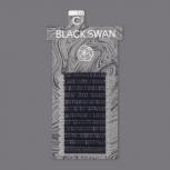 BLACK SWAN / D+ CURL